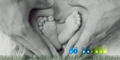 mundo-de-los-bebes_centro-infantil_parque_Santa-Cruz-Tenerife